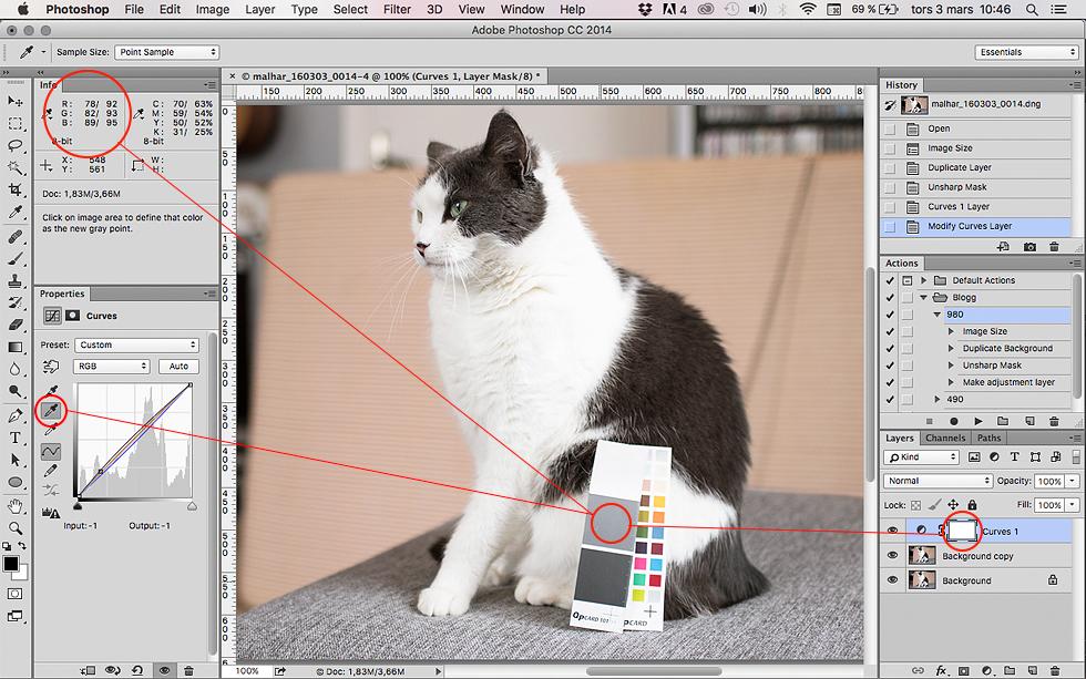 redigeringphptoshop-qpcard