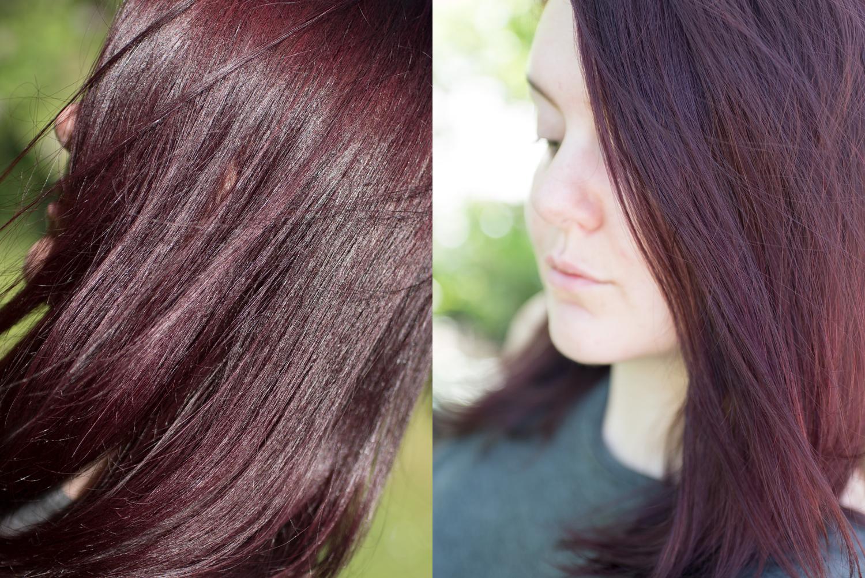 l'oréal colorista #violet